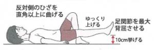 変形性膝関節症 リハビリ 筋トレ